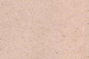 Crema Champagne Limestone Worktops L