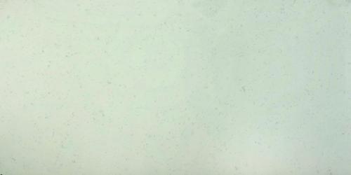 QZ123 Regency White Full Slab (1)